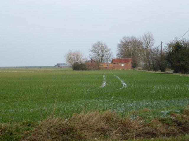 Farm buildings and crop near Gedney Drove End