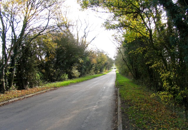 Holt Lane southwards