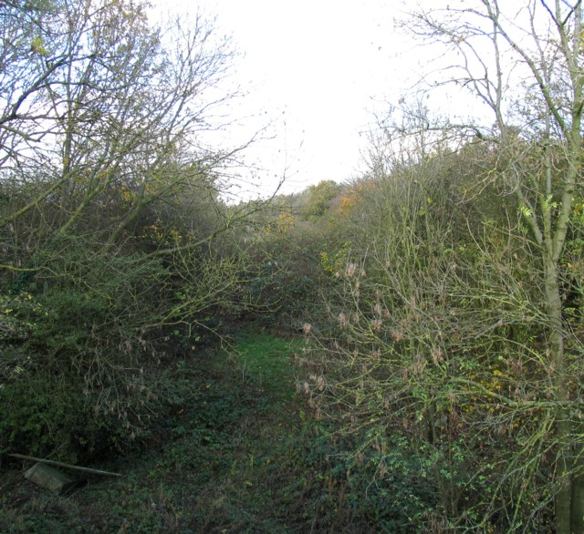 Former Great Central railway towards Leicester
