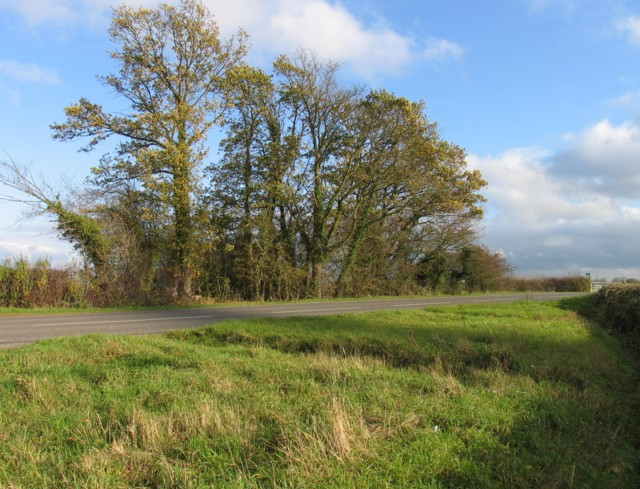 Gilmorton Road southwards by Andrew Tatlow