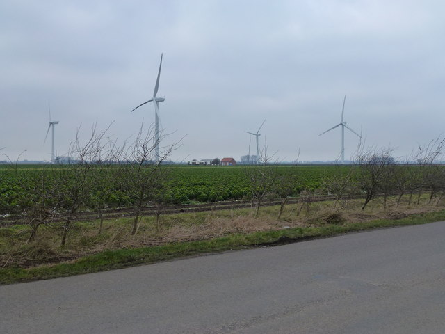 Red House Wind Farm, Gedney Marsh