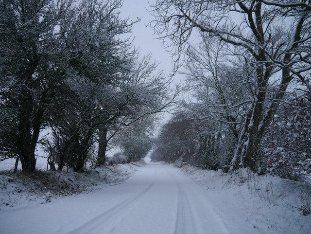 Minor Road Near Old Greenlaw