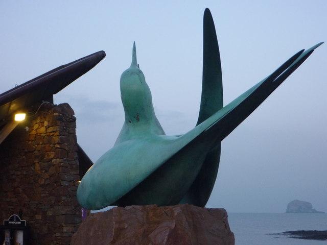 Coastal East Lothian : The Scottish Seabird Centre, North Berwick
