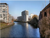 SJ8297 : River Irwell, Castlefield by David Dixon