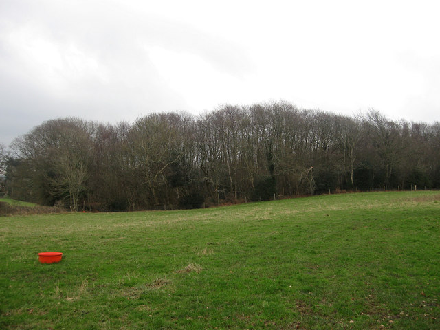 Gunhill Field