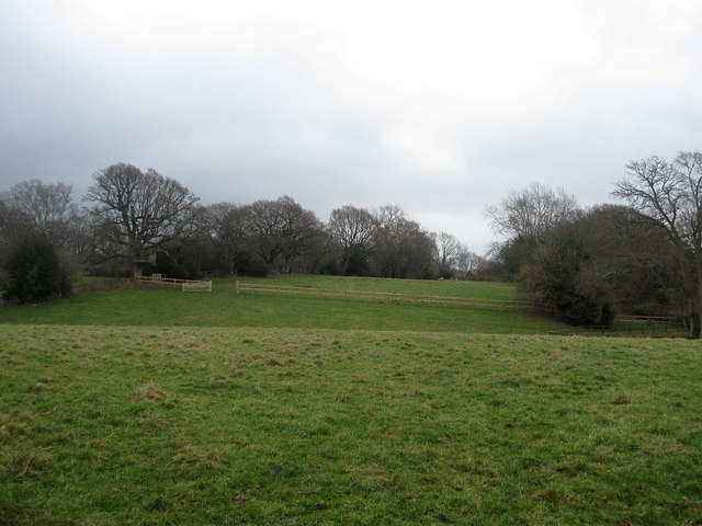 Front Meadow