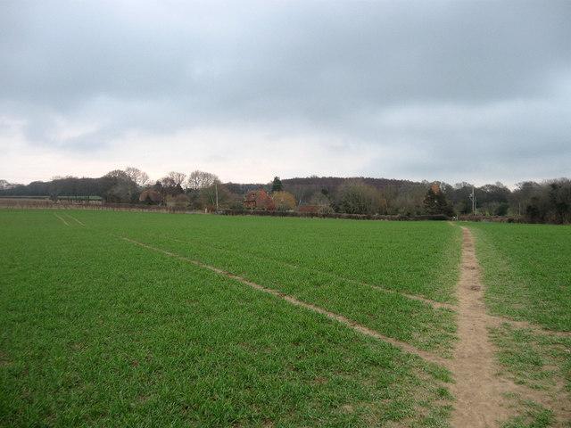 Barn Meadow