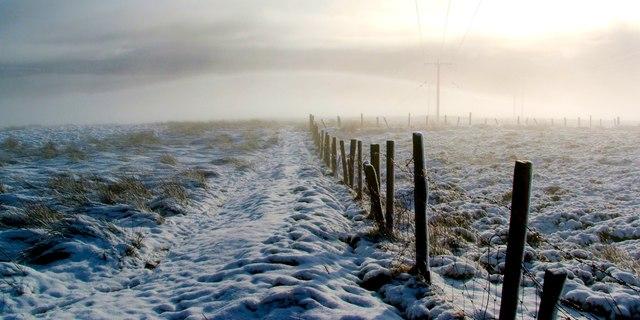Moorland fence