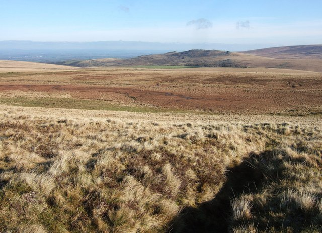 Moorland east of West Mill Tor