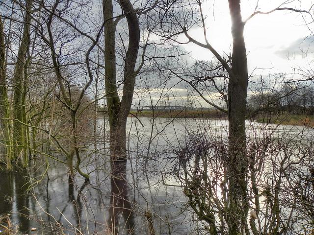Flooded Field Off Carrington Lane