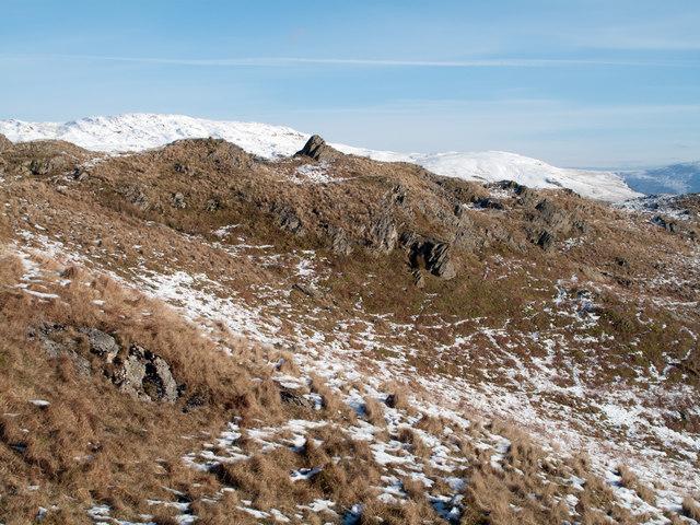 Knolls on rocky slope