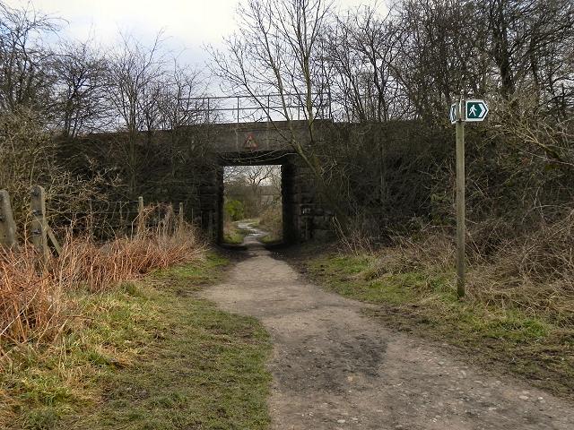 Footpath Under The Embankment