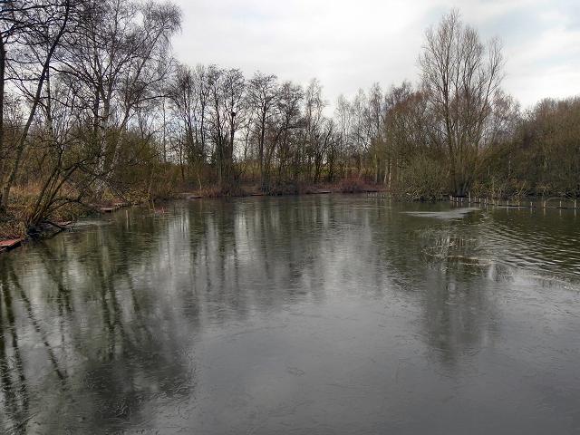 Dutton's Pond, Flixton