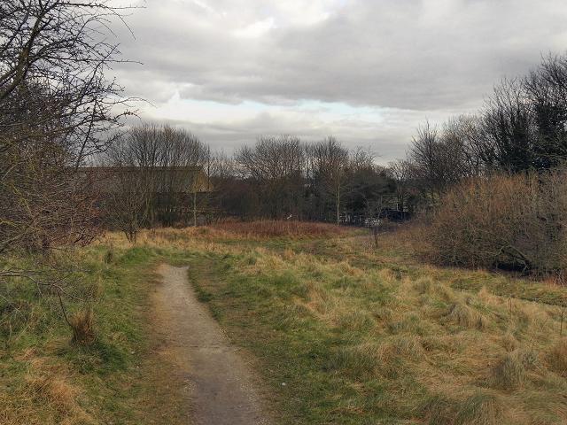Path Behind Lansdowne Road