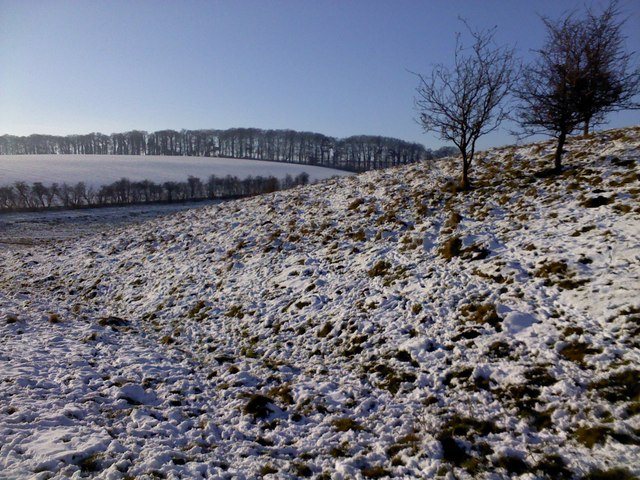 Tail of Fyfield Down in the snow
