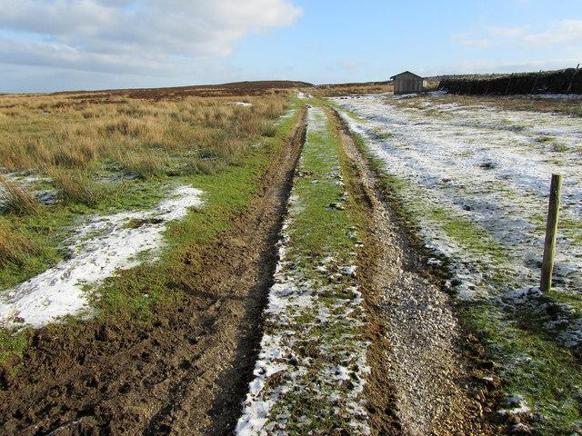 Track leading off Rocking Moor