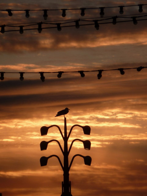 Blackpool: lamps silhouetted at sunset