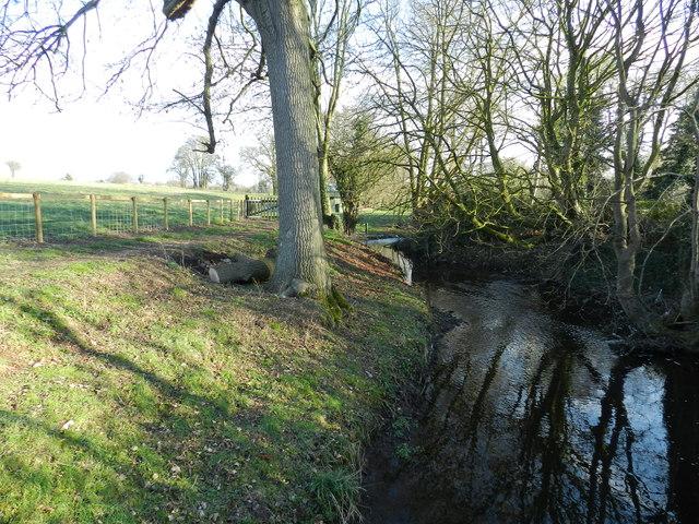 Stream in Wychbold