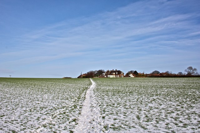 Winter Field, East Harlsey