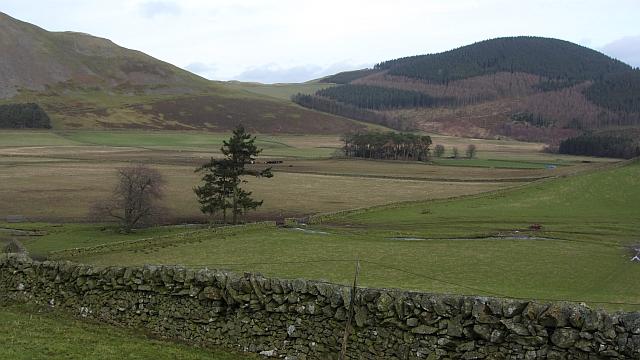 Flat land behind Cademuir