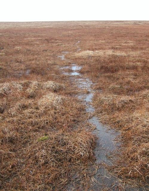 Wet path near Taw Head