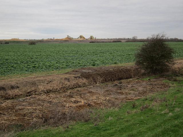 Scraped out ditch