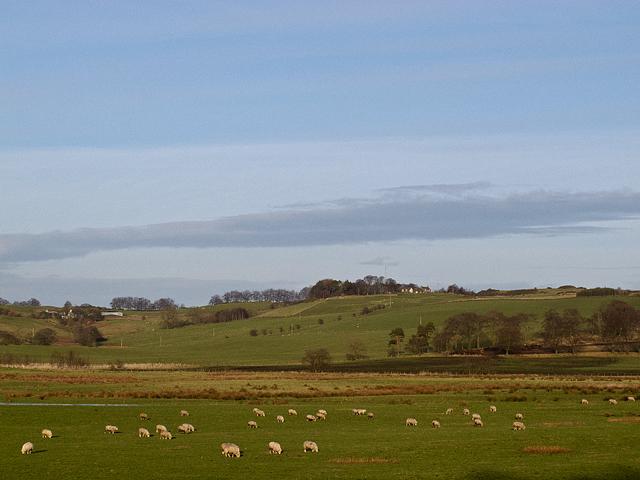 Farmland near Powmill