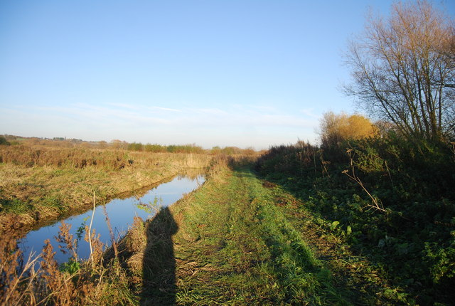 Footpath, Westbere Marshes