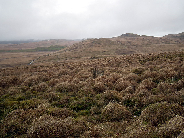 Pen Cerrig viewed from Syfydrin