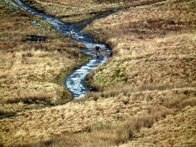 A cyclist heads for Llyn Syfydrin