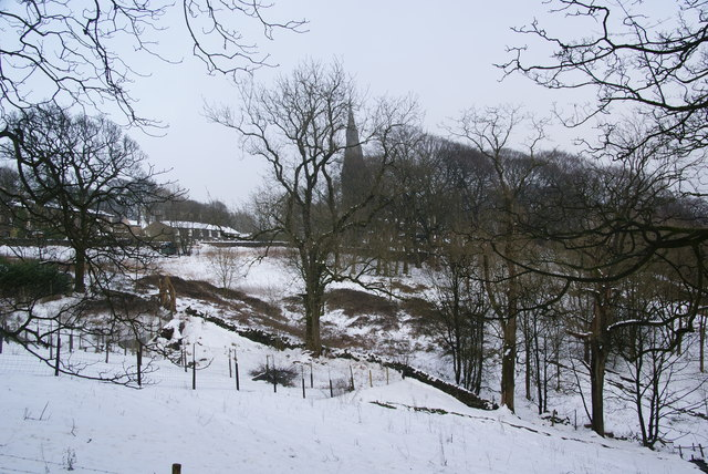 Hillside below Holcombe Village