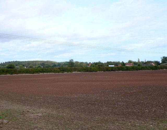 Recently seeded Field at Pelham Lane