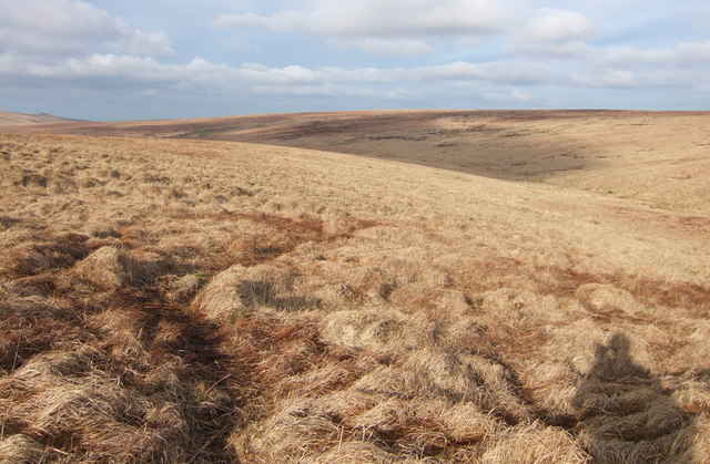 Moorland in the West Okement valley