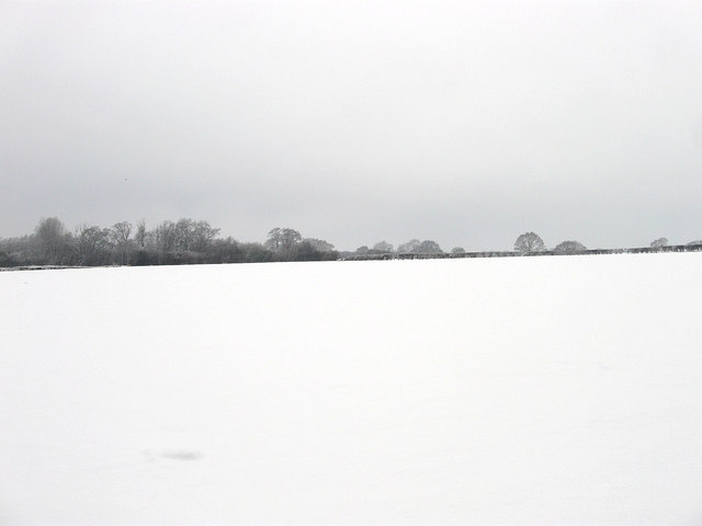 River Field