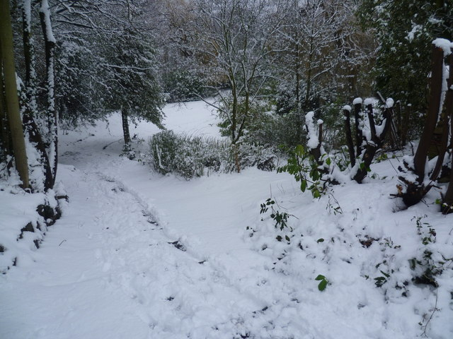 Rockcliffe Gardens in the snow