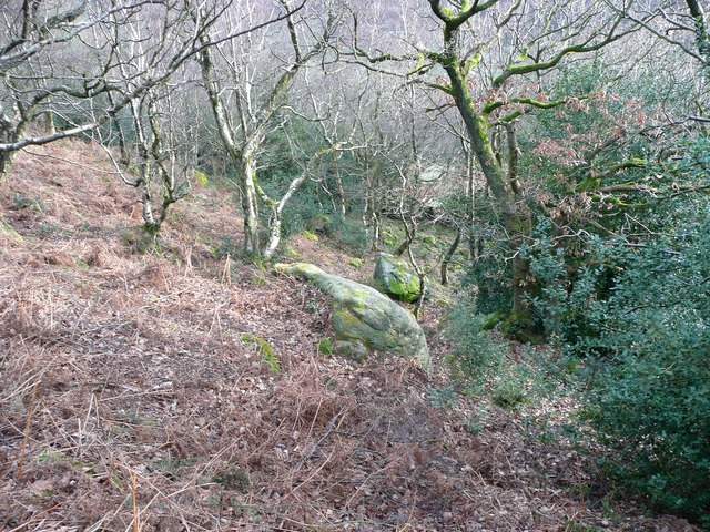 Sandy Pickle Wood, Cragg Vale
