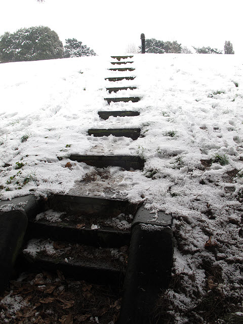 Reservoir steps