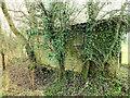 SU0124 : Old shed by Jonathan Kington