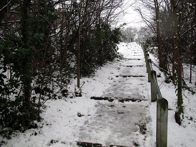 Steps to Hyde Vale