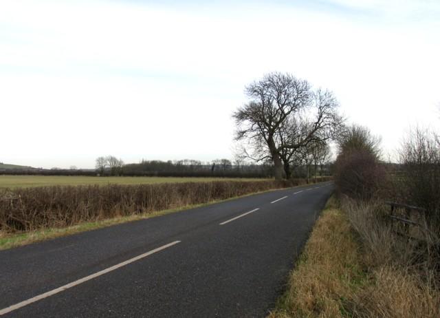 Ashley Road towards Cottingham