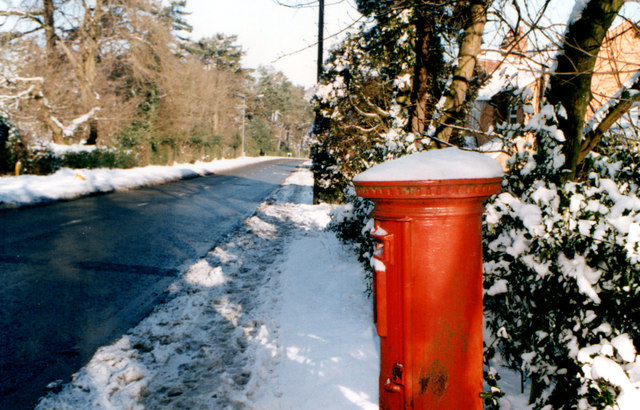 Rose Hill Lickey 1996