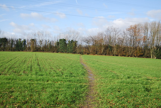 Footpath crossing a field