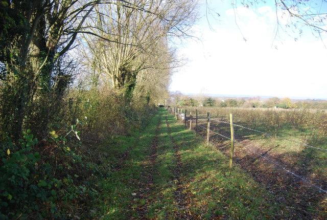 Footpath to Farleigh Green