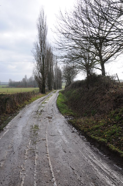 Lane to Woodend