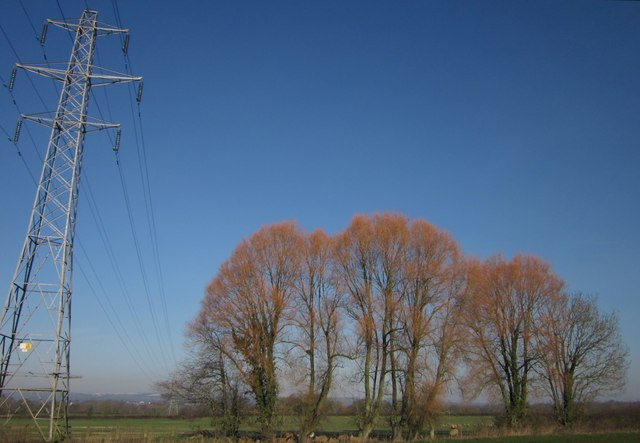 Willows and pylon near the A373