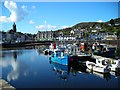 NR8668 : Tarbert Harbour by Mark Percy