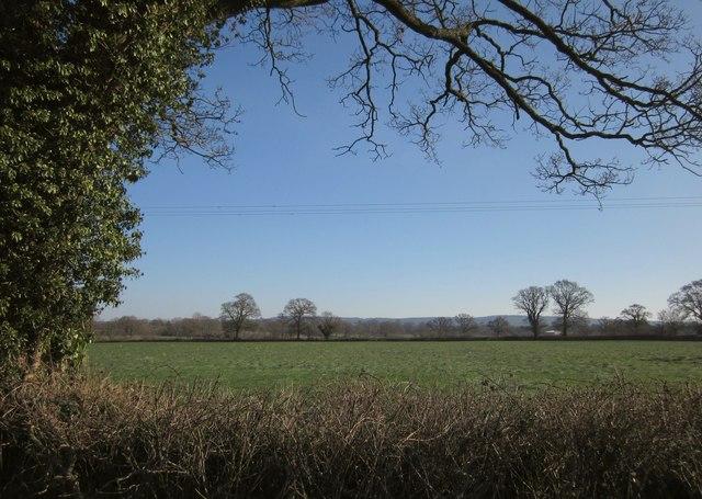 Field beside Horn Cross