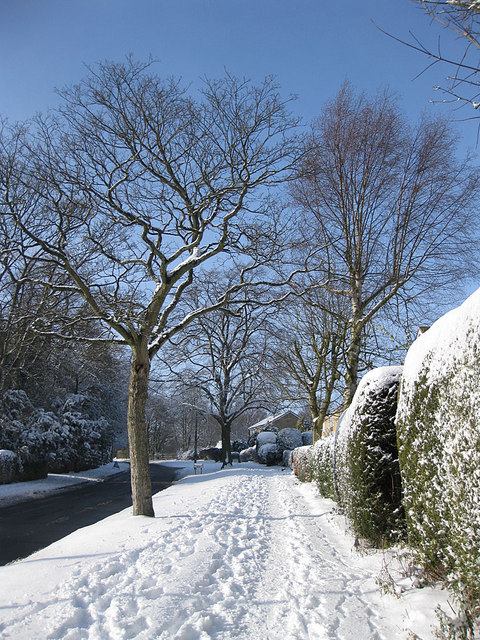 Castle Howard Road, a winter view