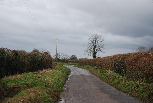 Cox's Lane