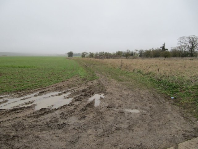 Track to Blewbury
